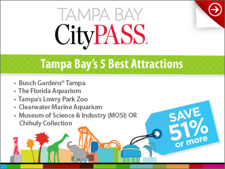 Visiting Tampa Bay You 39 Ll Love Citypass Busch Gardens Tampa
