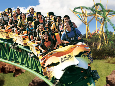 Guided Adventure Tour Exclusive Park Experience Busch Gardens Tampa