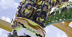 Summer Camps and Educational Programs at Busch Gardens Tampa Florida