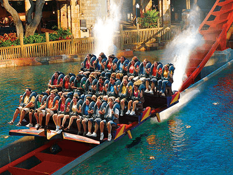 Sheikra diving roller coaster busch gardens tampa bay for Best day go busch gardens tampa