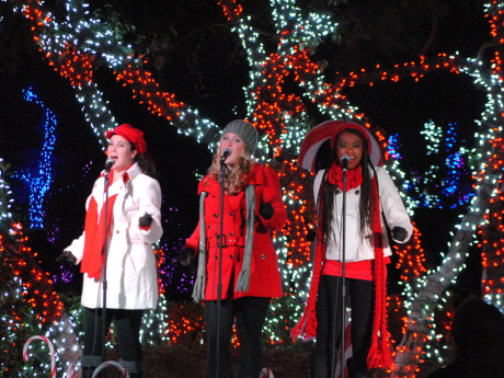 Seaworld S Christmas Celebration Entertainment Jobs