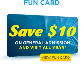Buy Annual Passes