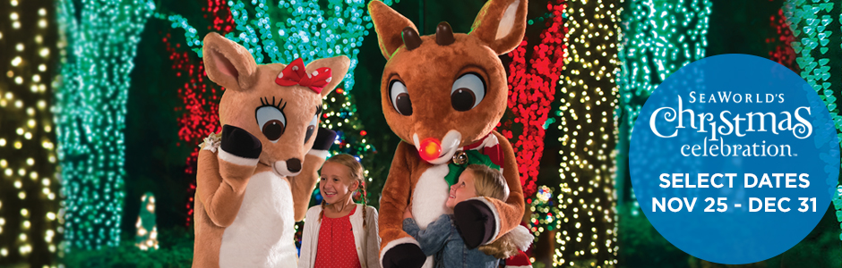 Meet Rudolph the Red Nosed Reindeer at SeaWorld's Christmas Celebration